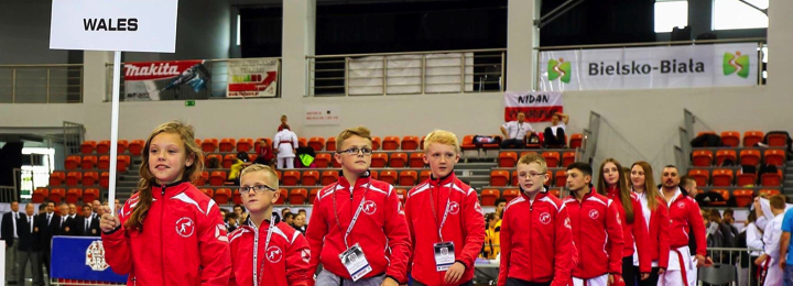 Polish International Open Championships 2015